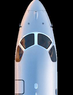 cabeza de avión